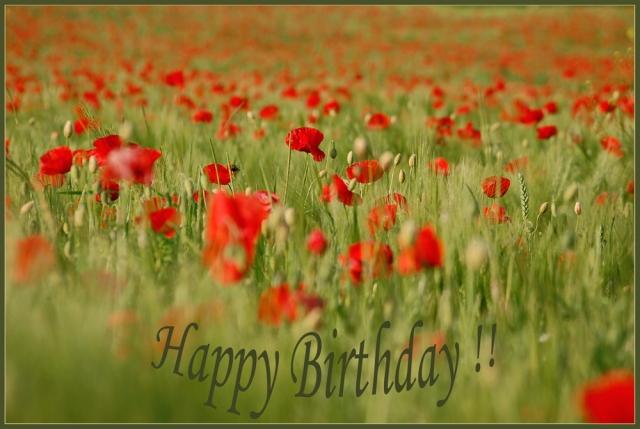 Geburtstag-Sina